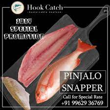 hook Catch Pinjalo Snapper